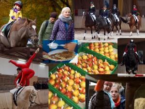 Collage Tag der offenen Tür 2015